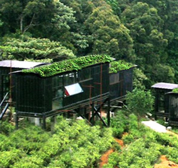 the rainforest ecolodge deniyaya sri lanka green. Black Bedroom Furniture Sets. Home Design Ideas